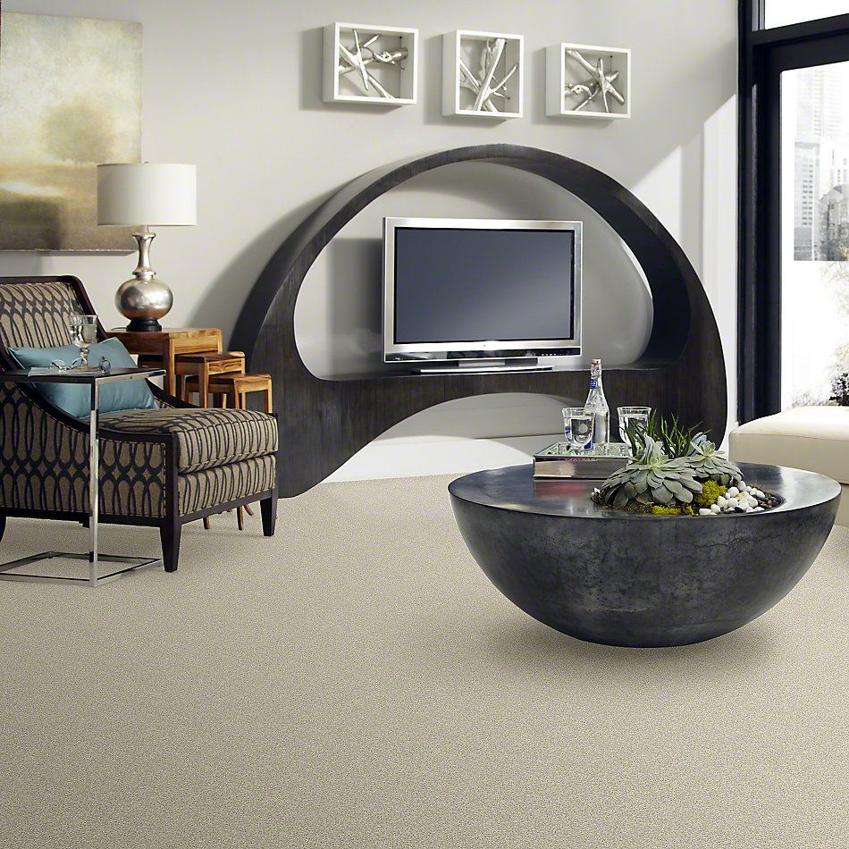 Shaw Floors Anso Colorwall Designer Twist Platinum (s) Candlewick 00124_EA091