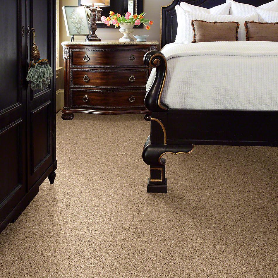 Shaw Floors Lonestar Coffee 00124_E0113
