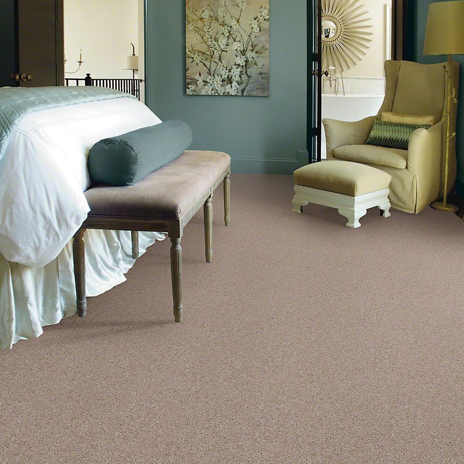 Shaw Floors Shaw Design Center All In Goose Down 00124_QC317