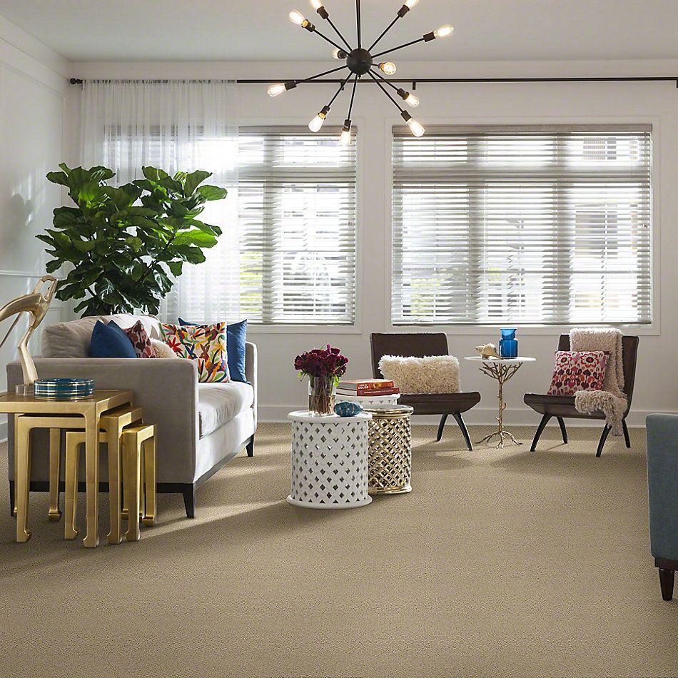 Shaw Floors SFA Sincere Beauty Loop Parchment 00125_EA184