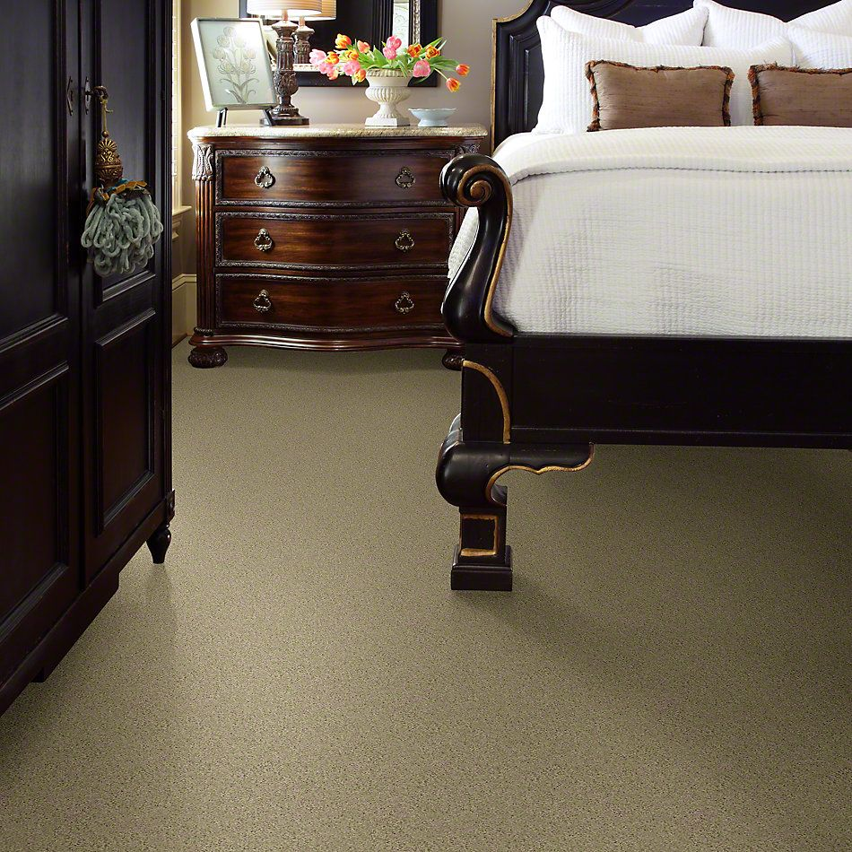 Shaw Floors Shaw Flooring Gallery Inspired By II Beach Walk 00126_5560G