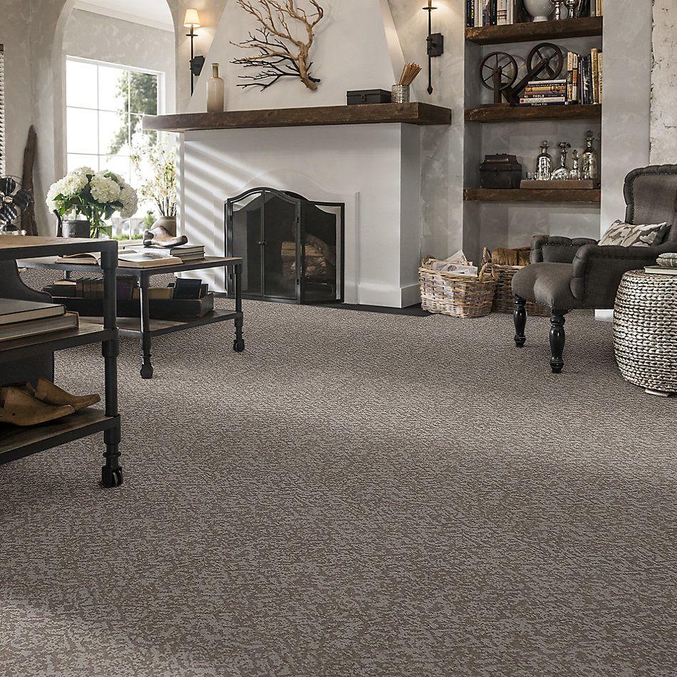 Shaw Floors Caress By Shaw Free Spirit Cold Winter 00126_CC70B