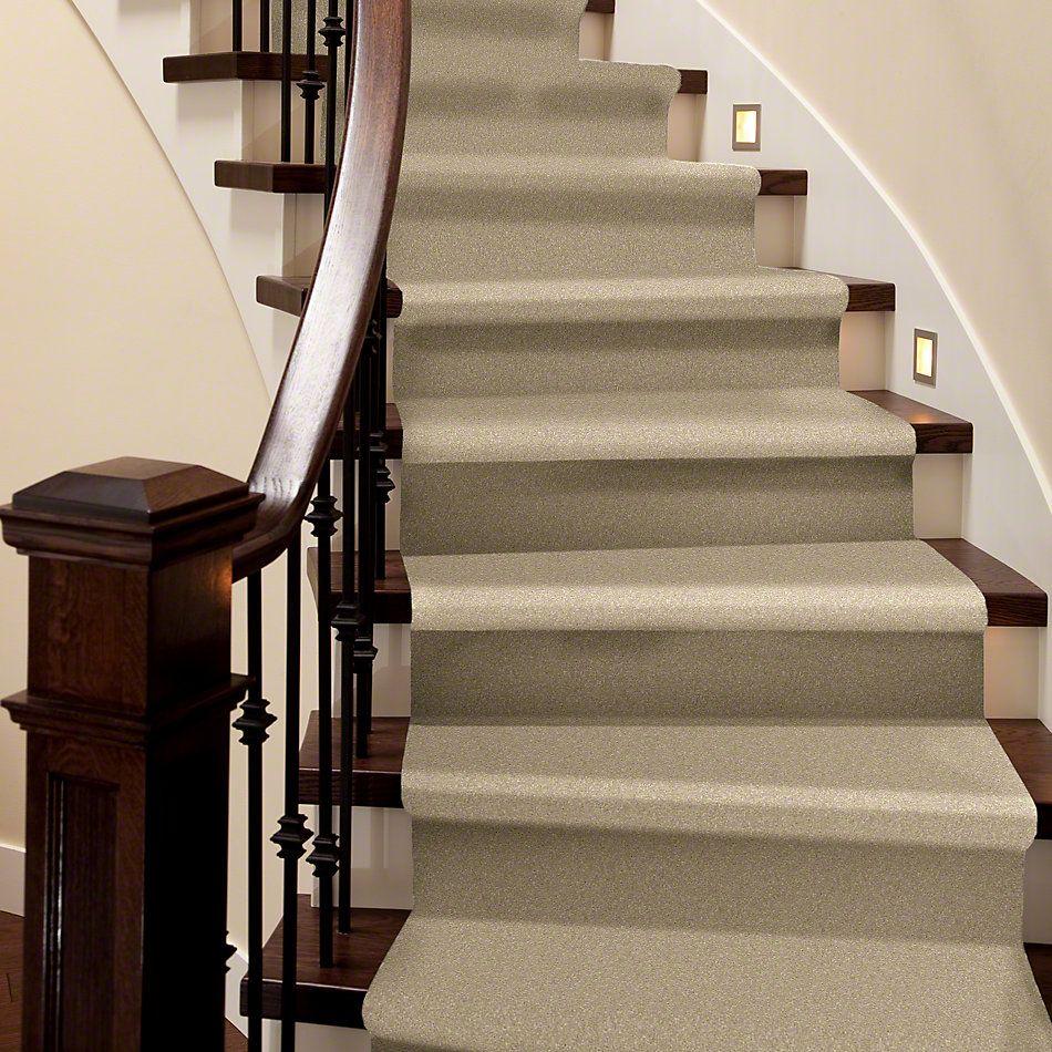 Shaw Floors Caress By Shaw Quiet Comfort Classic III Gentle Doe 00128_CCB98