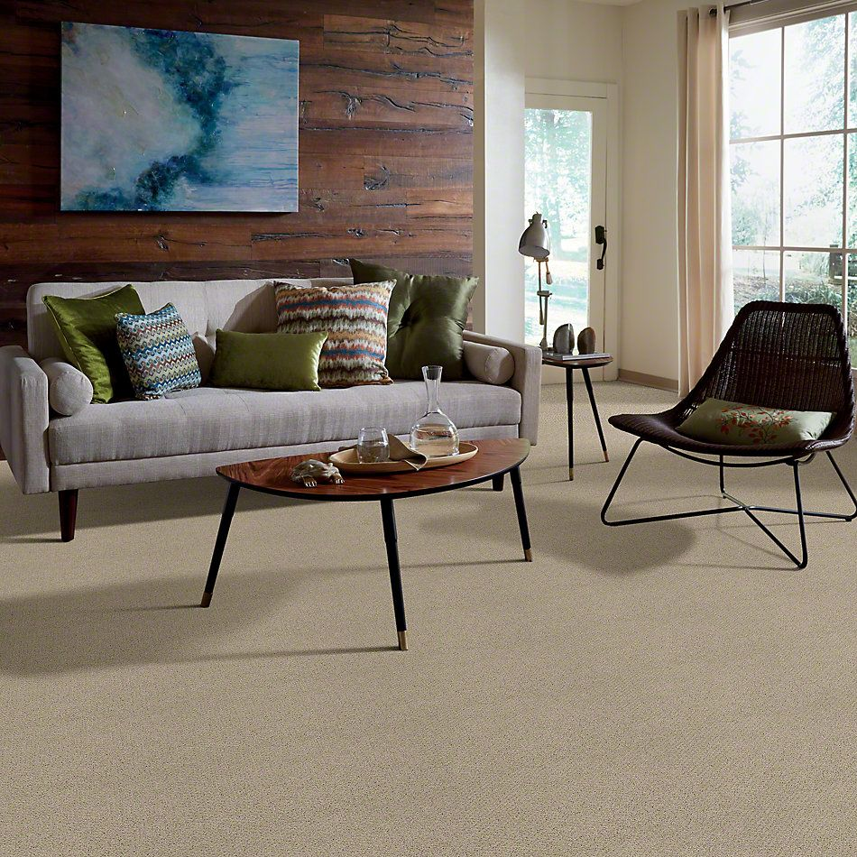 Shaw Floors Shaw Flooring Gallery Supreme Comfort Loop Stucco 00129_5469G