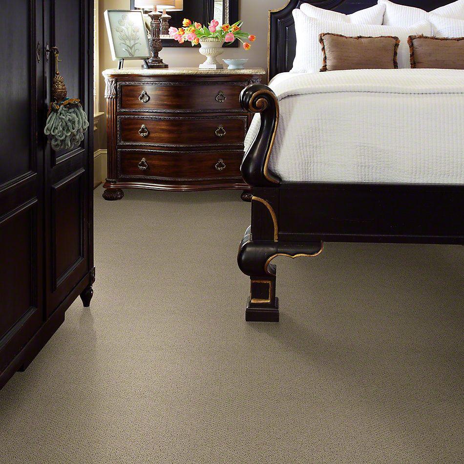 Shaw Floors Timeless Charm Loop Stucco 00129_E0405