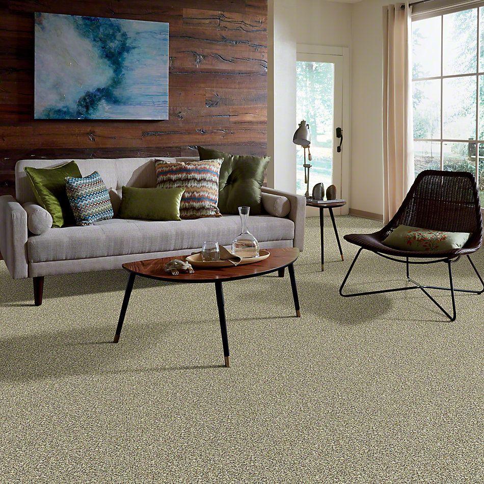 Shaw Floors SFA Awesome 2 Sunlit Granite (b) 00130_0C211