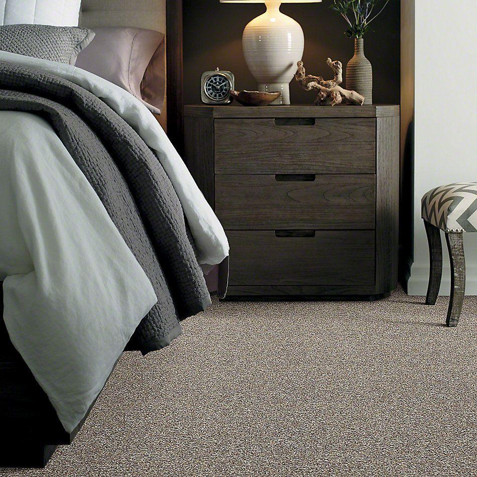 Shaw Floors Lauth With Me (b) Net Lamp Light 00130_E0777