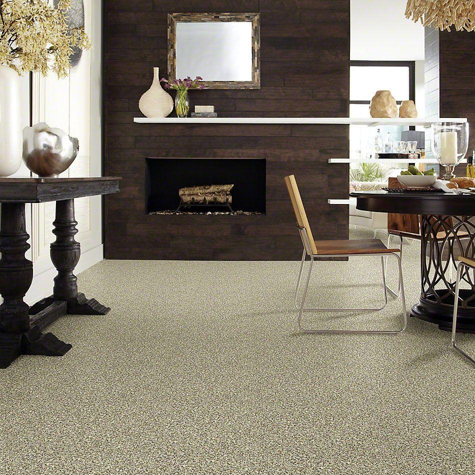 Shaw Floors Value Collections Inspire Me (b) Net Sunlit Granite 00130_E0845
