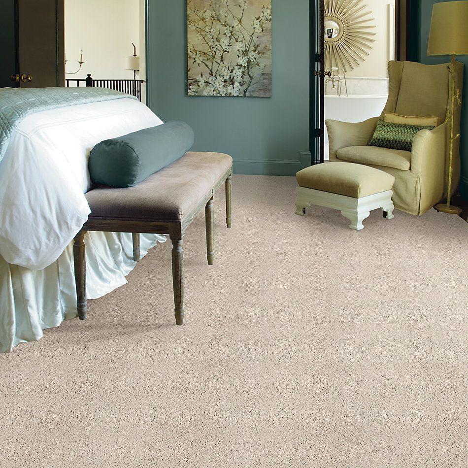 Shaw Floors Foundations Take The Floor Twist II Net Biscotti 00131_5E070