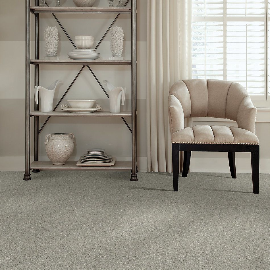 Shaw Floors Simply The Best Boundless Iv Soft Breeze 00131_5E488