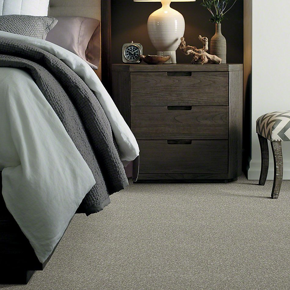 Shaw Floors Value Collections Dyersburg Classic 12 Net Pebble Path 00132_E9206