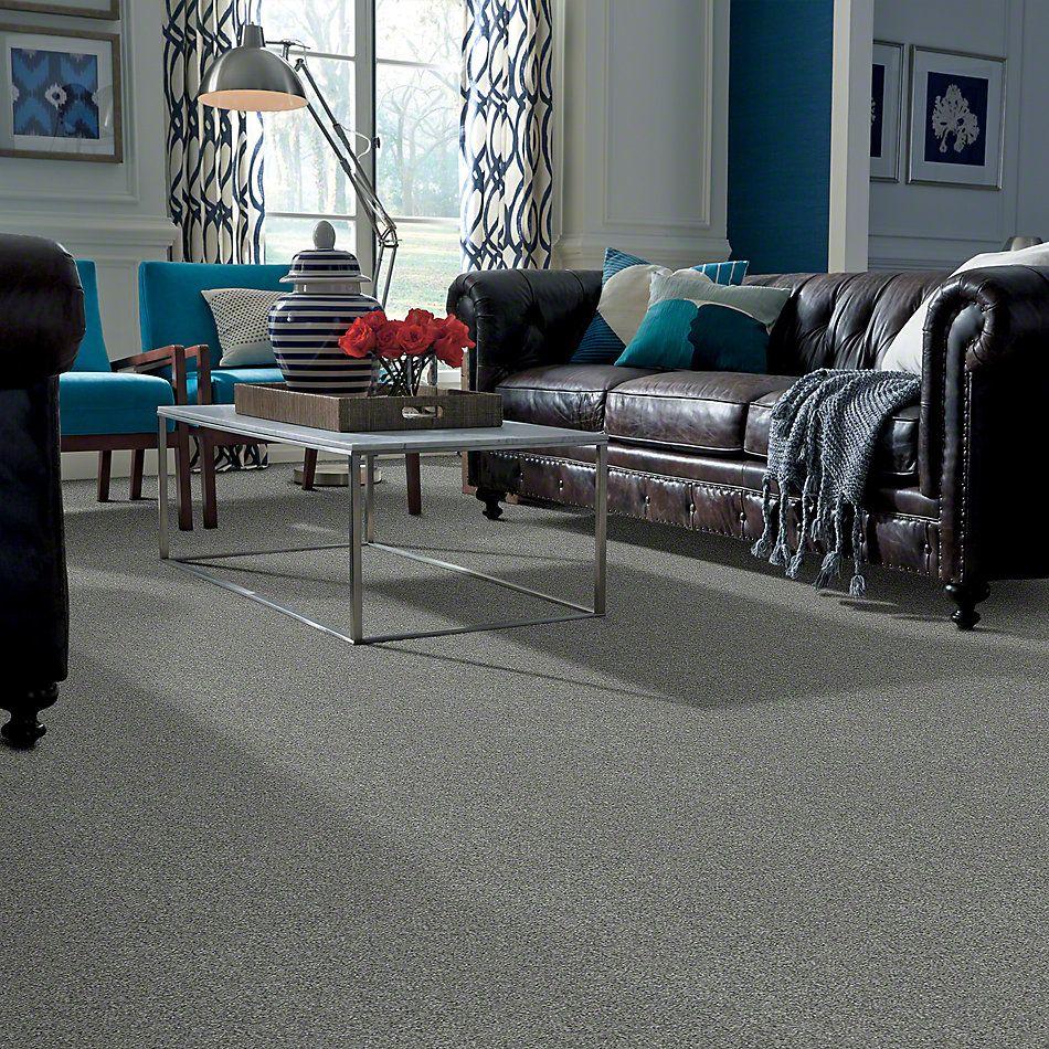 Shaw Floors Anso Colorwall Platinum Texture 12′ Grey Fog 00133_EA572