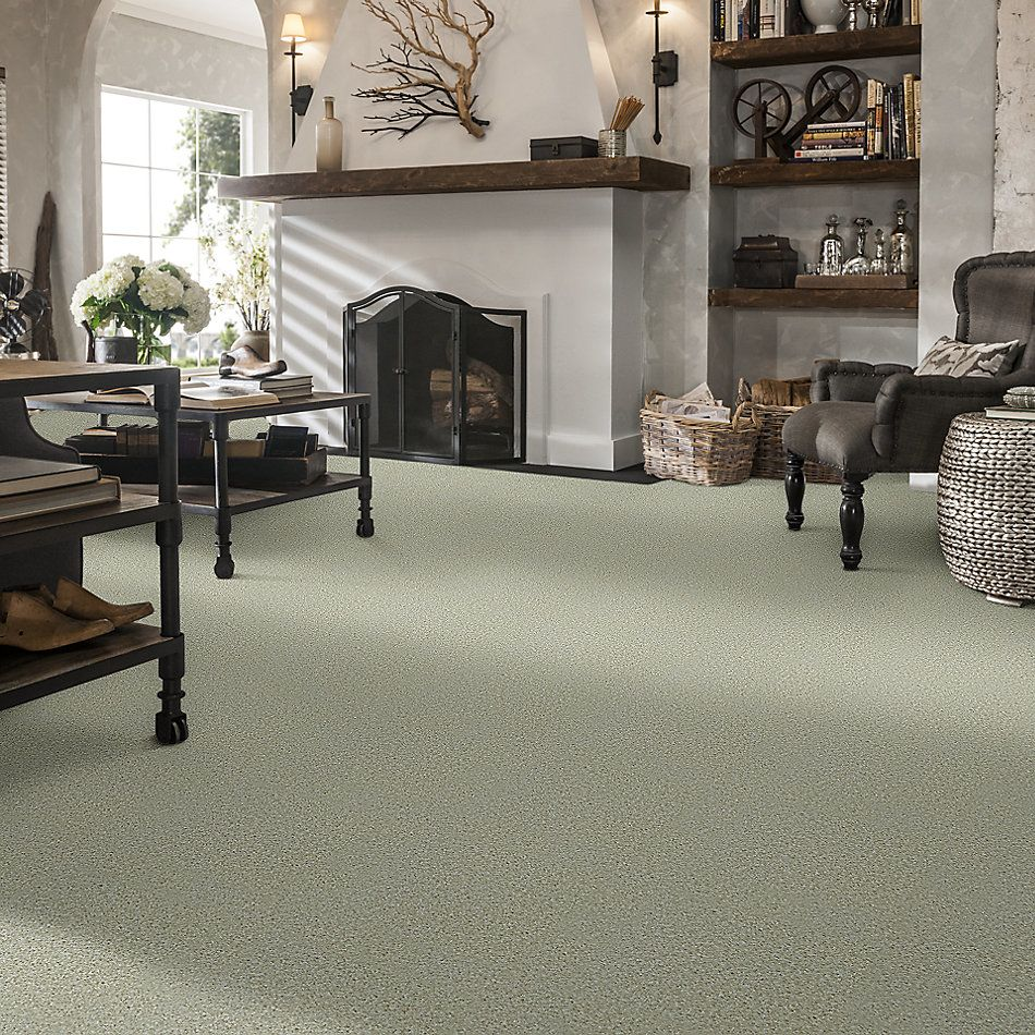 Shaw Floors Value Collections Play Hard Net Bliss 00135_E0797