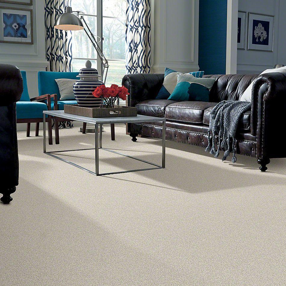 Shaw Floors Foundations Take The Floor Twist II Alpaca 00140_5E015