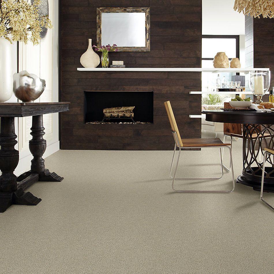 Shaw Floors Simply The Best Boundless I Net Morning Light 00140_5E503