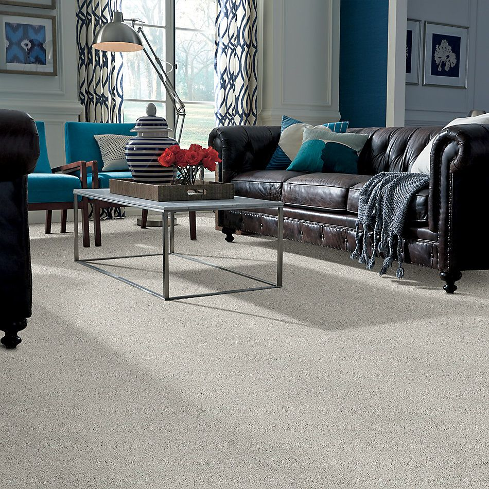 Shaw Floors Value Collections Take The Floor Twist II Net Lead The Way 00141_5E070