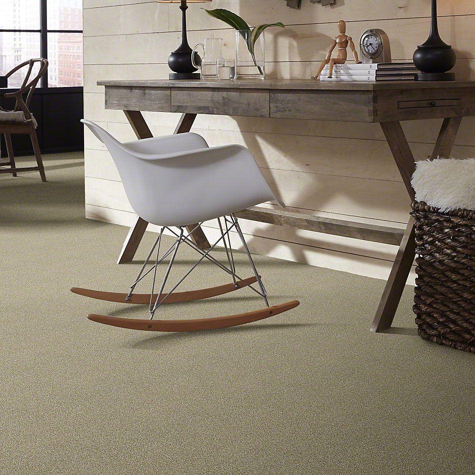 Shaw Floors Cabana Bay Tonal Net Wheat Field 00142_5E046