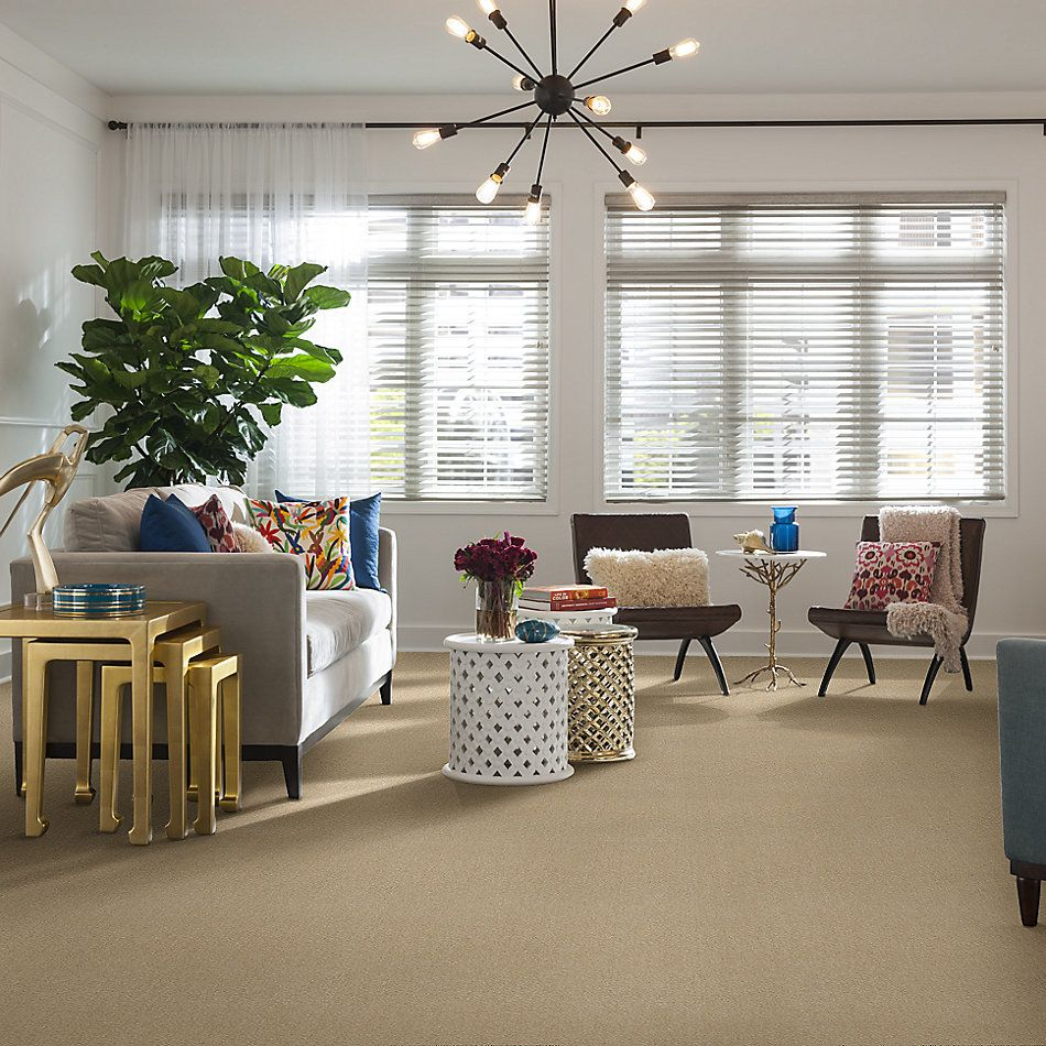 Shaw Floors Heroic Silk Thread 00143_5E287