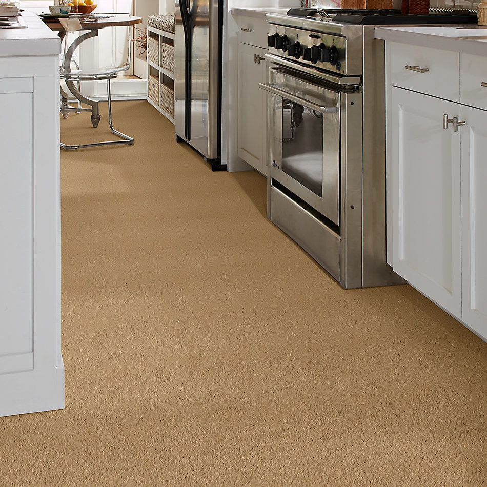 Shaw Floors Shaw Design Center Kinship 3.25 Dry Rye 00147_DC200