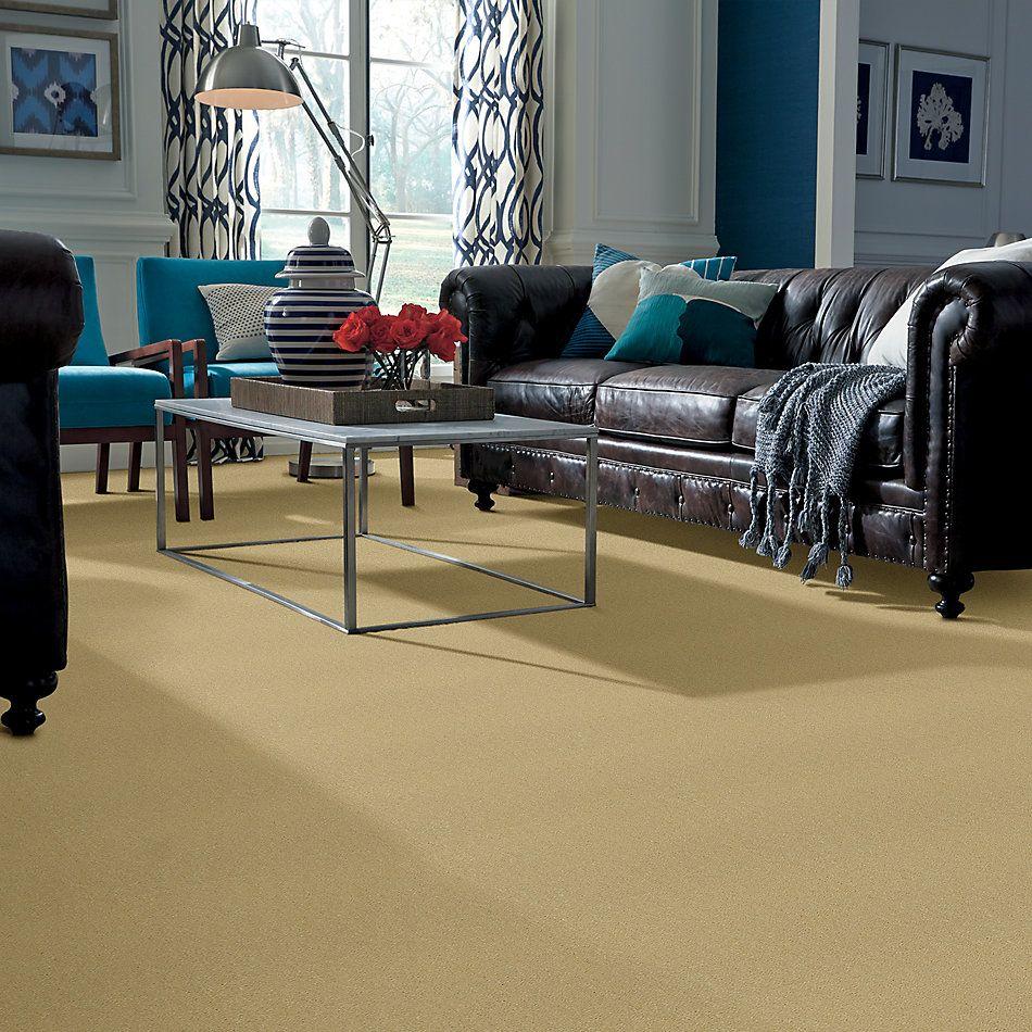 Shaw Floors Shaw Design Center Kinship 3.25 Butter 00148_DC200