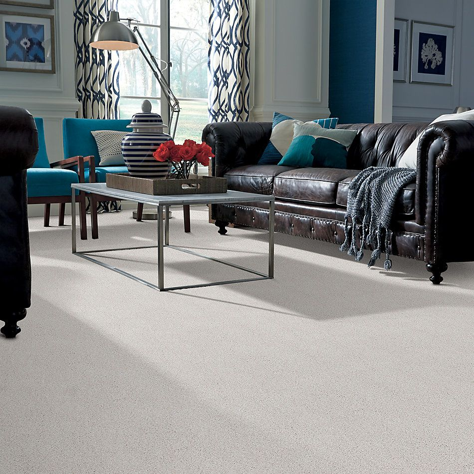 Shaw Floors Value Collections Cozy Harbor I Net Snowfall 00150_5E364
