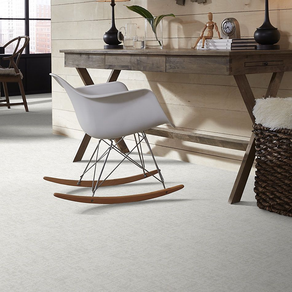 Shaw Floors Value Collections Fine Structure Net Snowfall 00150_5E370