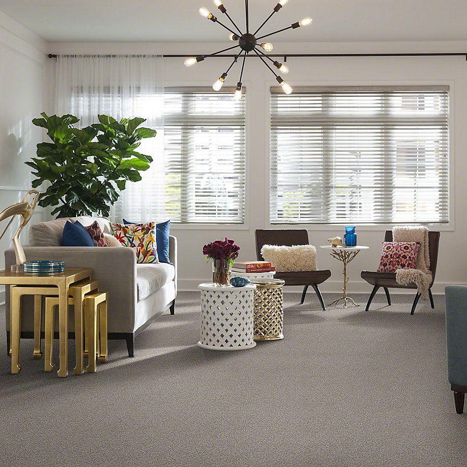 Shaw Floors SFA Totally Convinced Textured Canvas 00150_EA558