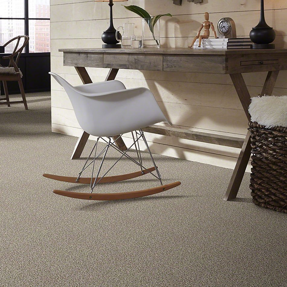 Shaw Floors Value Collections Treat Me (t) Net Shitake 00150_E0858