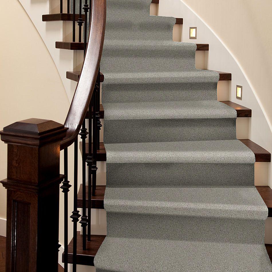 Shaw Floors Nfa/Apg Detailed Elegance I Textured Canvas 00150_NA341