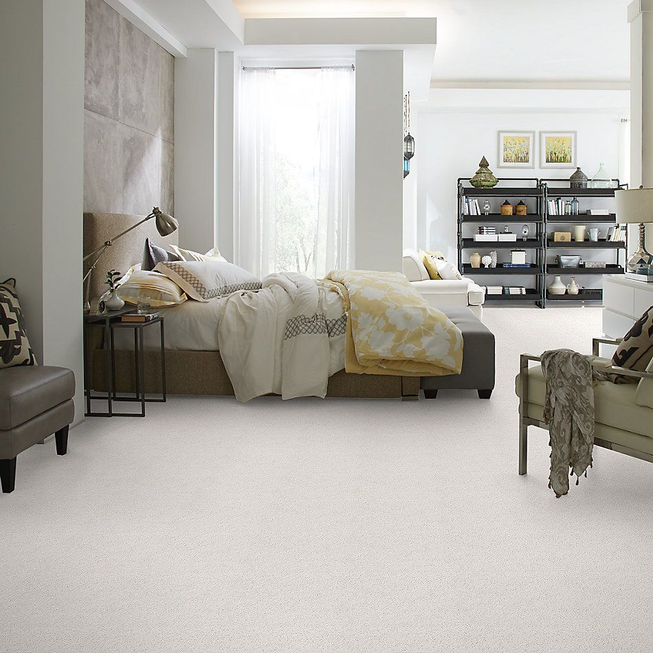 Shaw Floors Value Collections Take The Floor Twist Blue Dove 00151_5E071