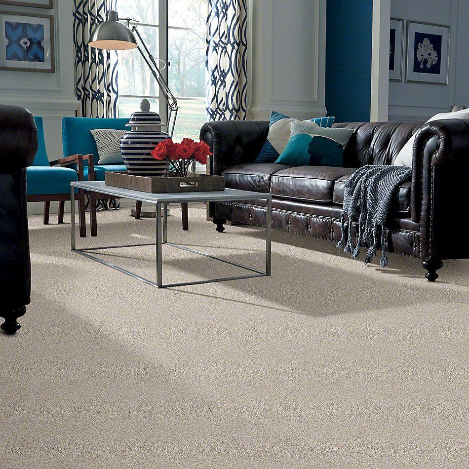 Shaw Floors Confident Smile Bare Essence 00151_E0649