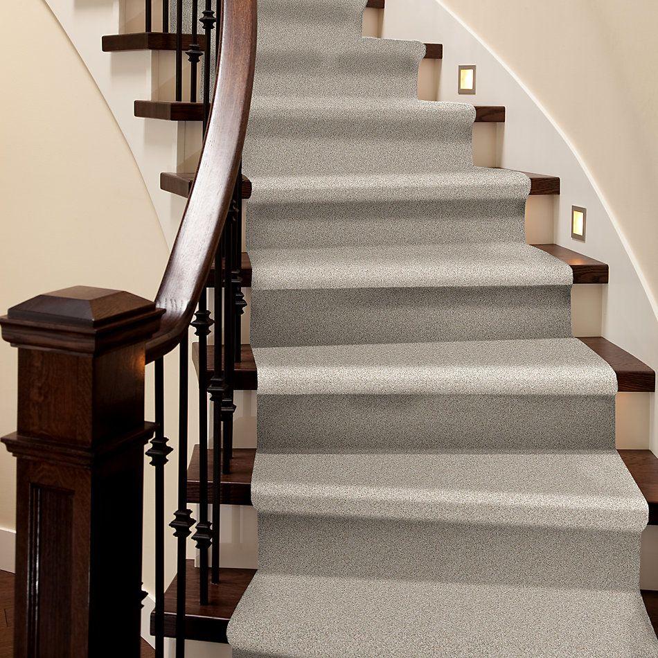 Shaw Floors Nfa/Apg Detailed Tonal Bare Essence 00151_NA340