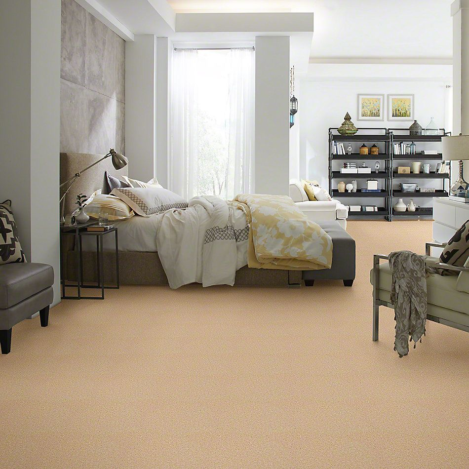 Shaw Floors Let's Race Softly Beige 00152_E0588