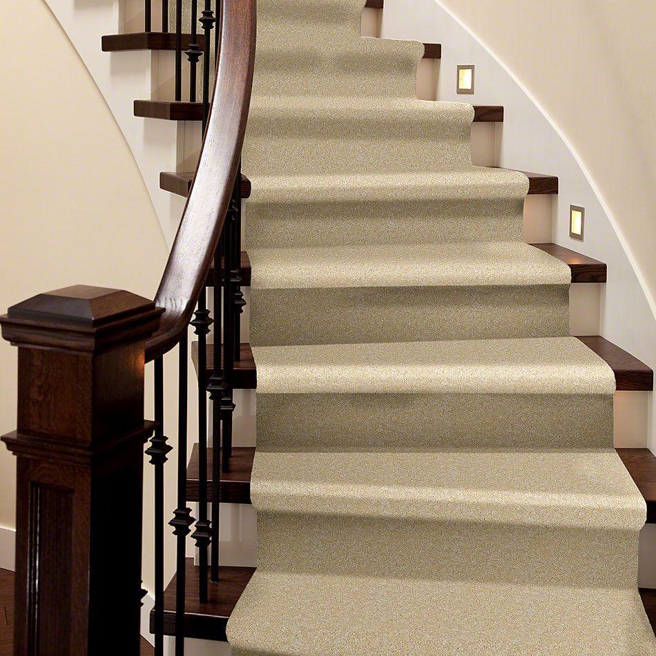 Shaw Floors Roll Special Xv420 Warm Bread 00155_XV420