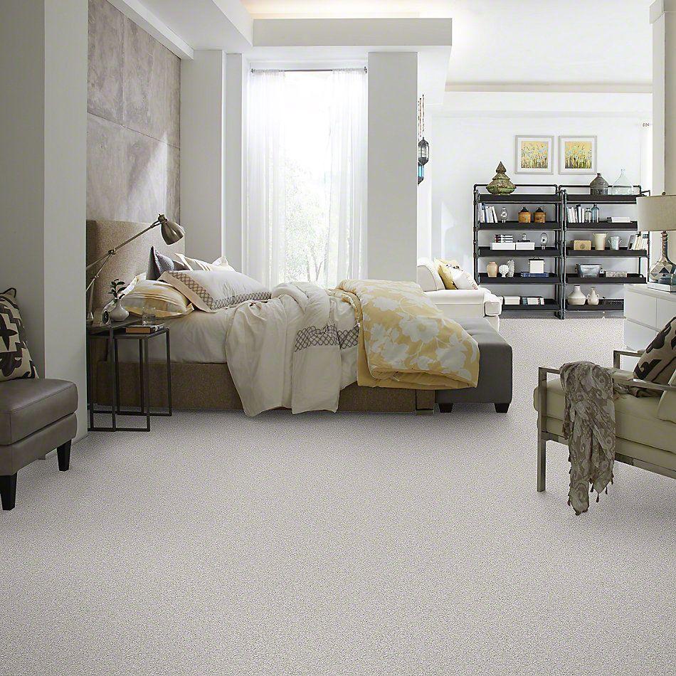 Shaw Floors Take The Floor Tonal II Classique 00161_5E009