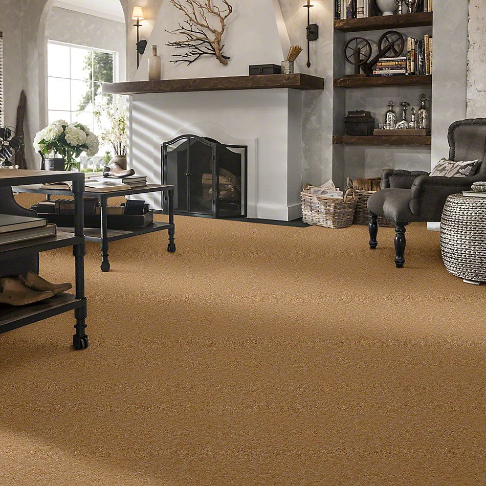 Shaw Floors Property Solutions Viper Classic Sisal 00161_HF862