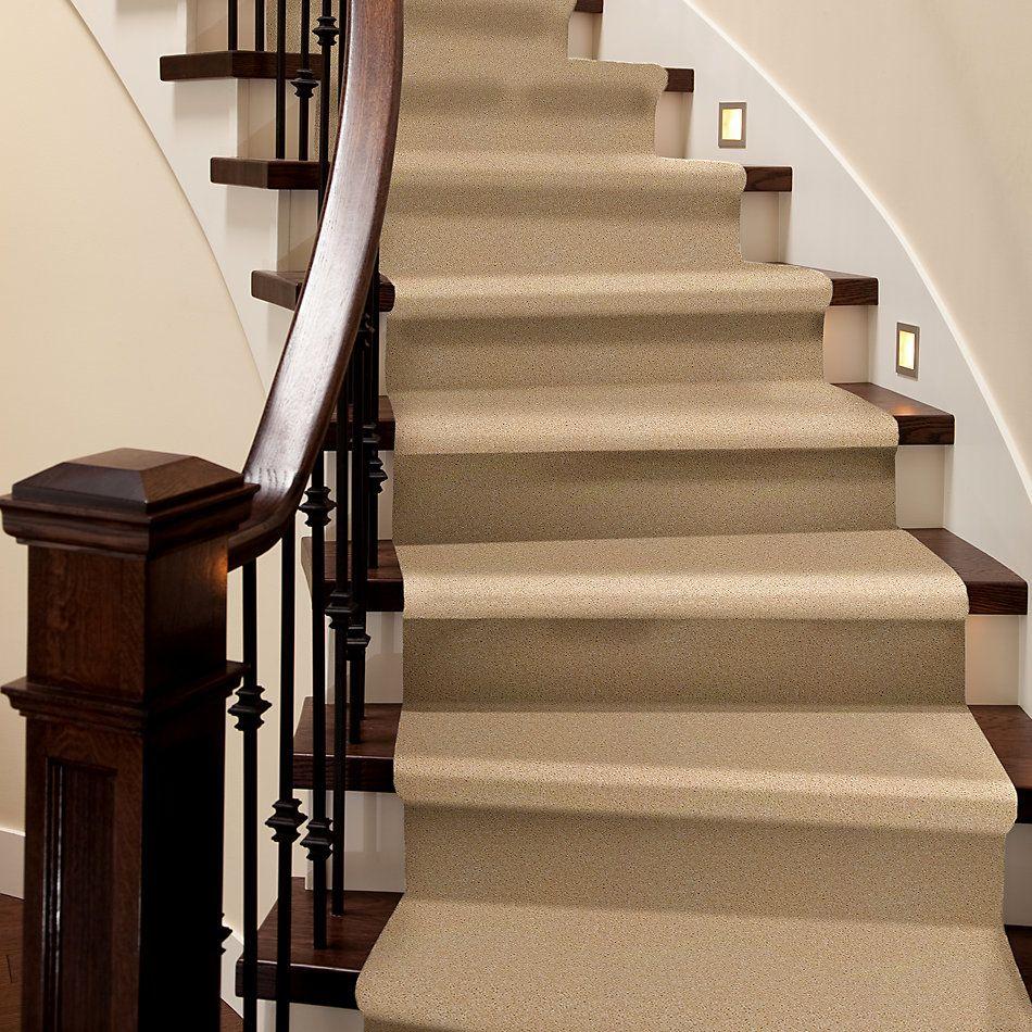 Shaw Floors Zipp Plus Sand 00162_Q3883