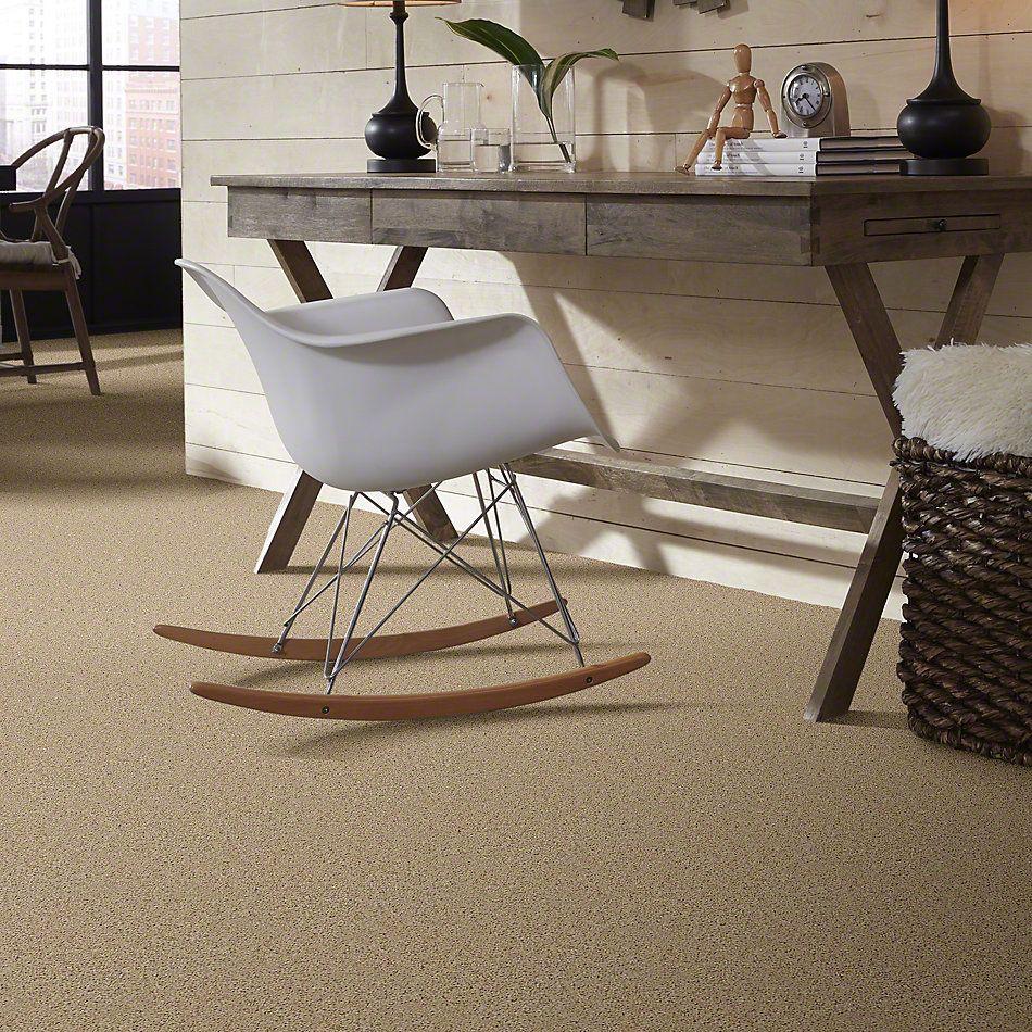 Shaw Floors Fusion Value 400 Warm Breeze 00163_E0282