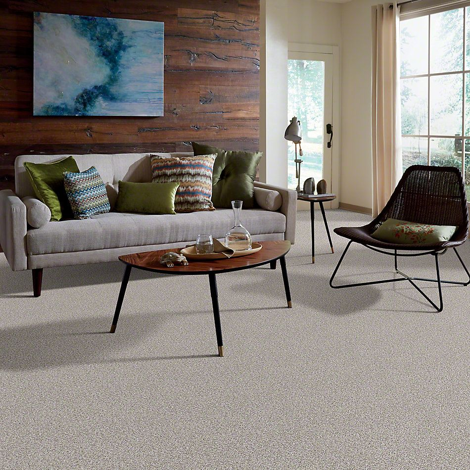 Shaw Floors Shaw Design Center Style Standard II Art District 00170_5C772