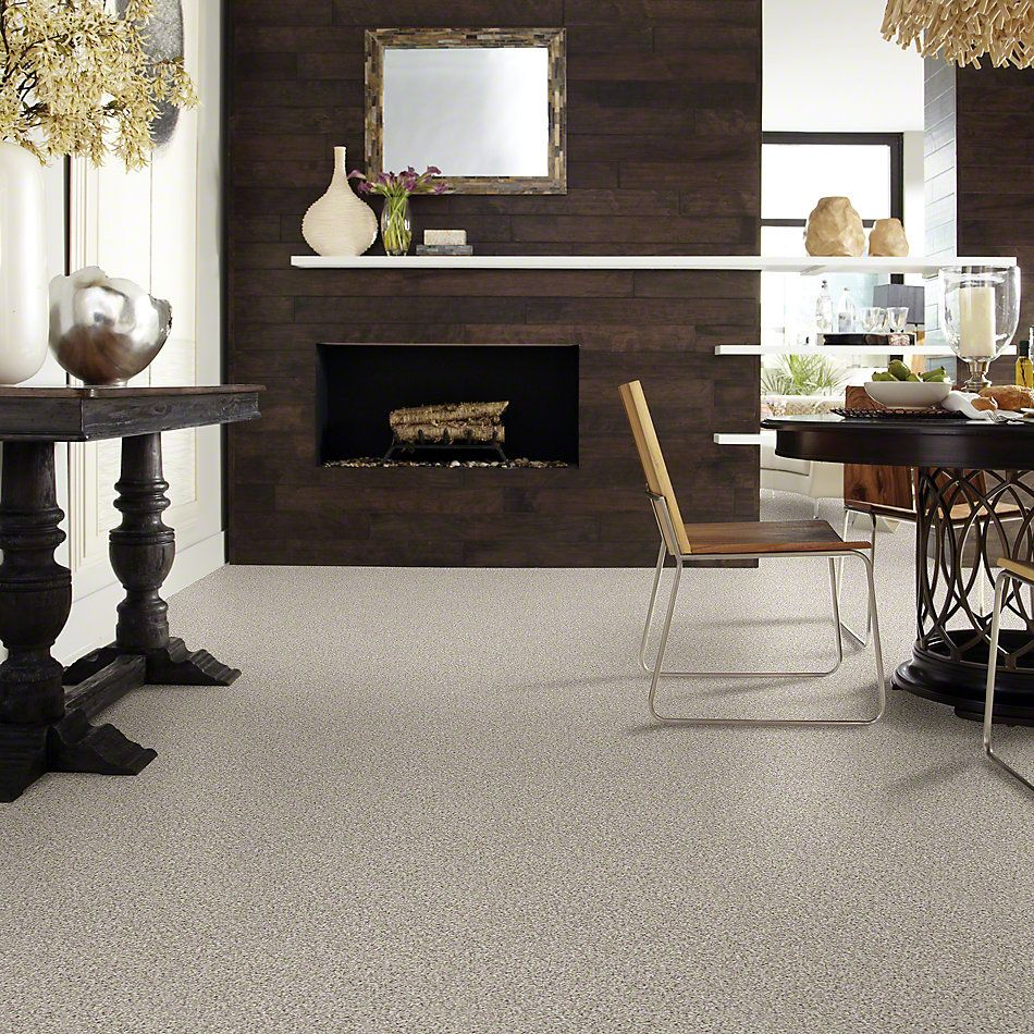 Shaw Floors Shaw Design Center Style Standard I Sun Bleached 00171_5C771