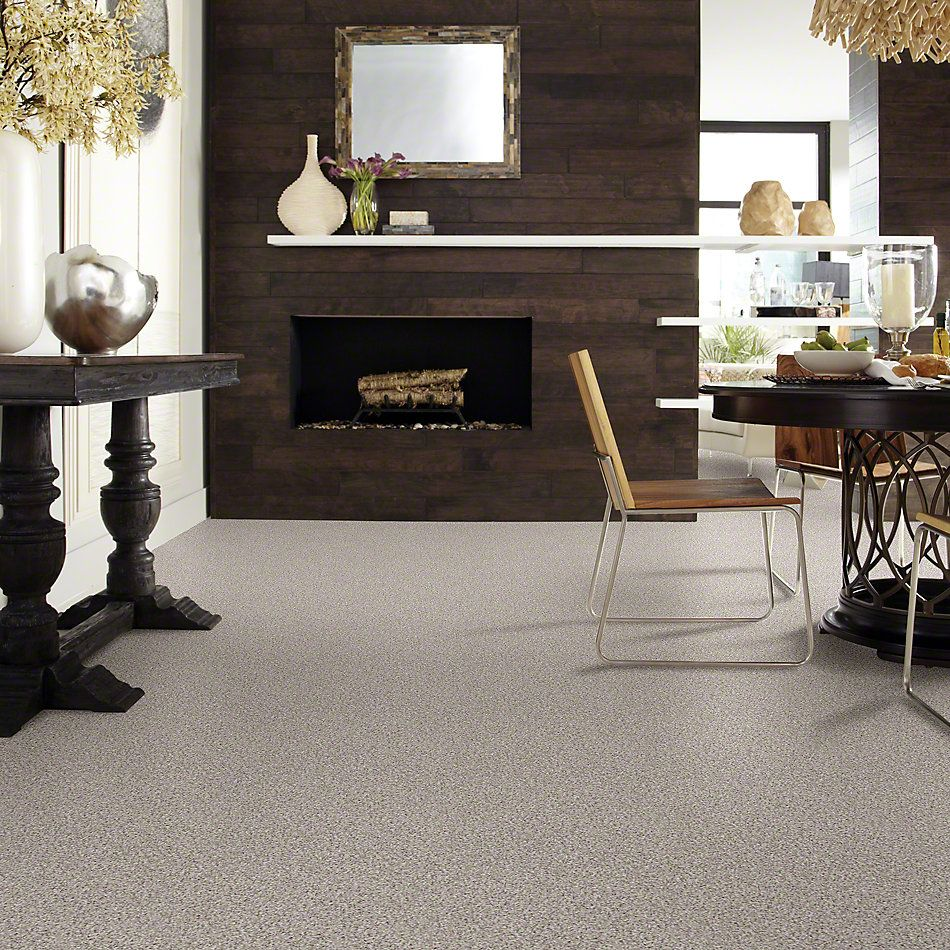 Shaw Floors Shaw Design Center Style Standard III Pebble Path 00172_5C773