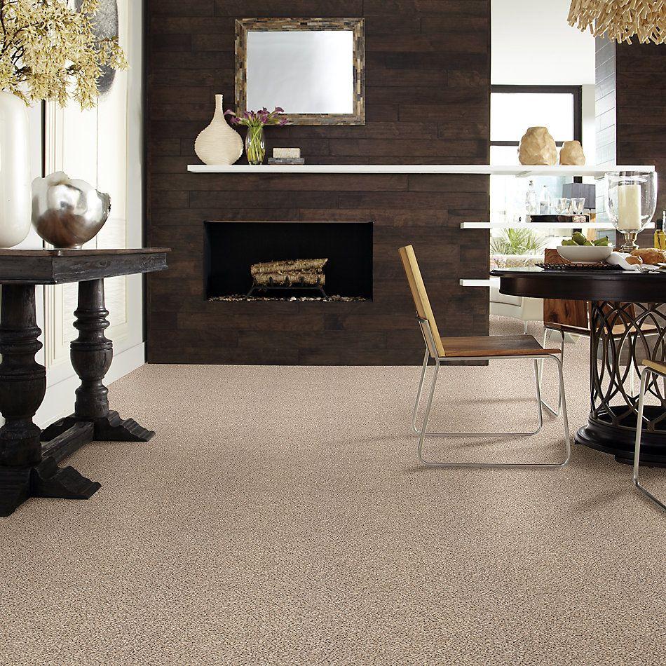 Shaw Floors Foundations Take The Floor Accent I Net Desert Sunrise 00172_5E075