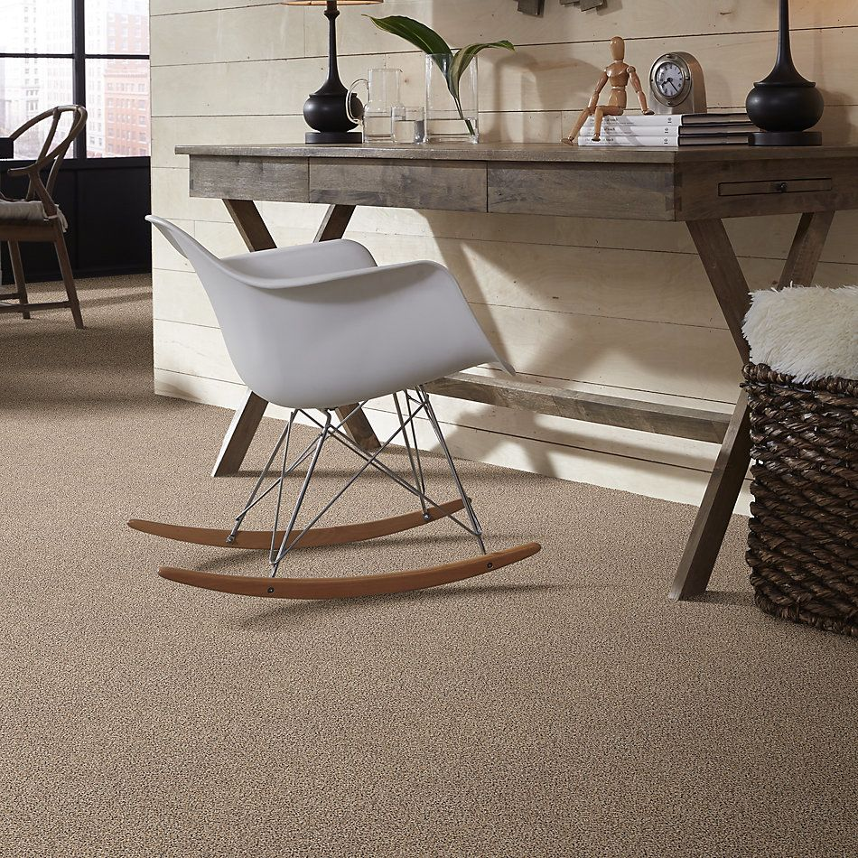 Shaw Floors Value Collections Take The Floor Accent II Net Desert Sunrise 00172_5E076