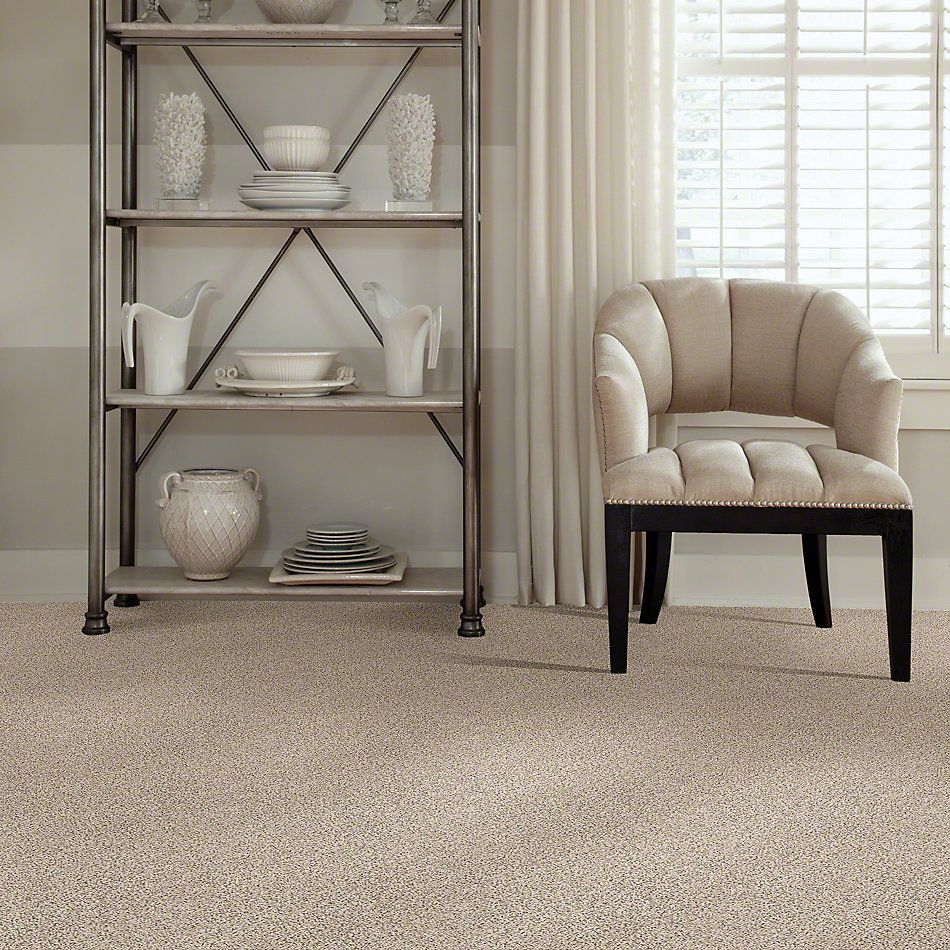 Shaw Floors Elemental Mix II Horizon 00172_E9565