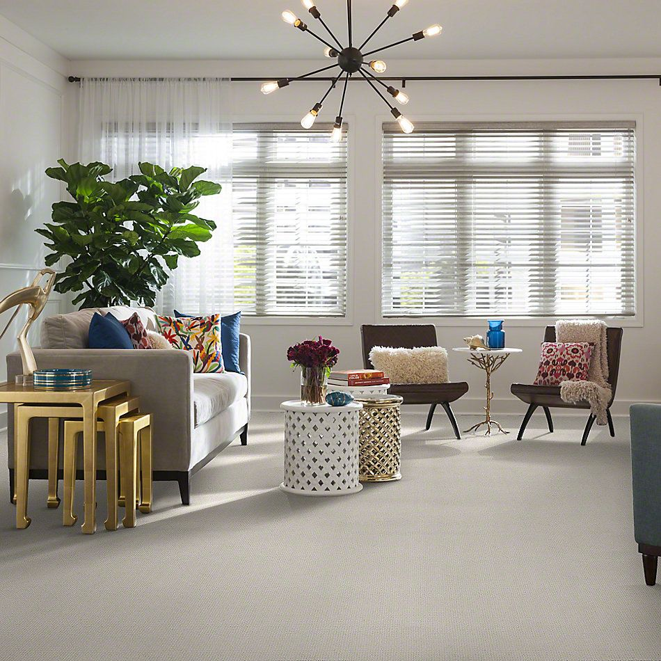 Shaw Floors Sensible Now Crisp Linen 00172_E9720