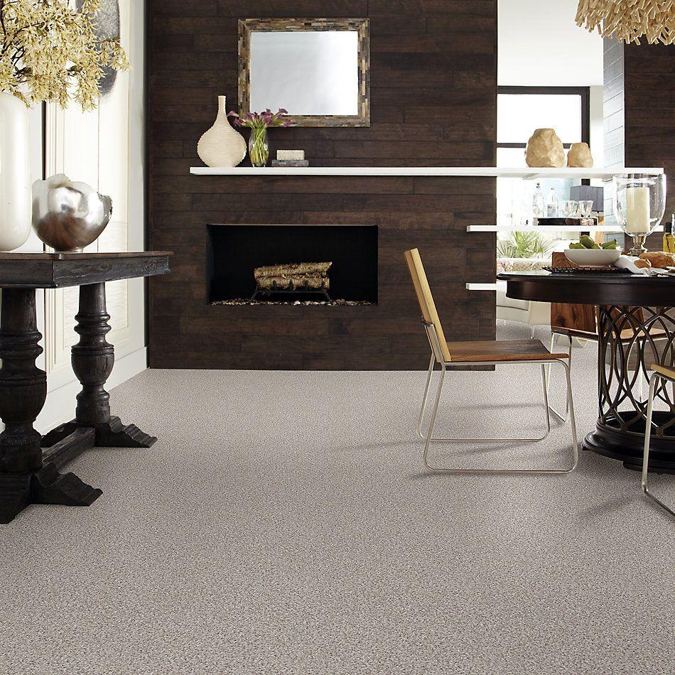 Shaw Floors Nfa/Apg Detailed Artistry I Pebble Path 00172_NA328