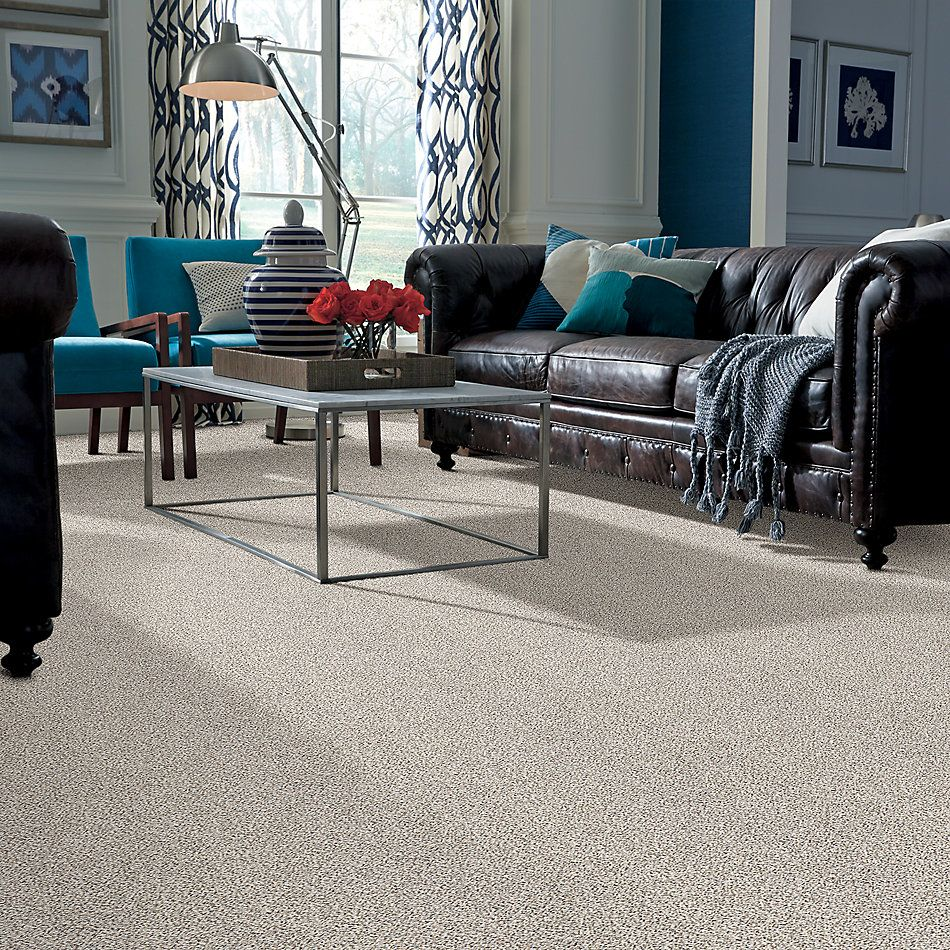 Shaw Floors Value Collections Take The Floor Accent II Net Avalanche 00173_5E076