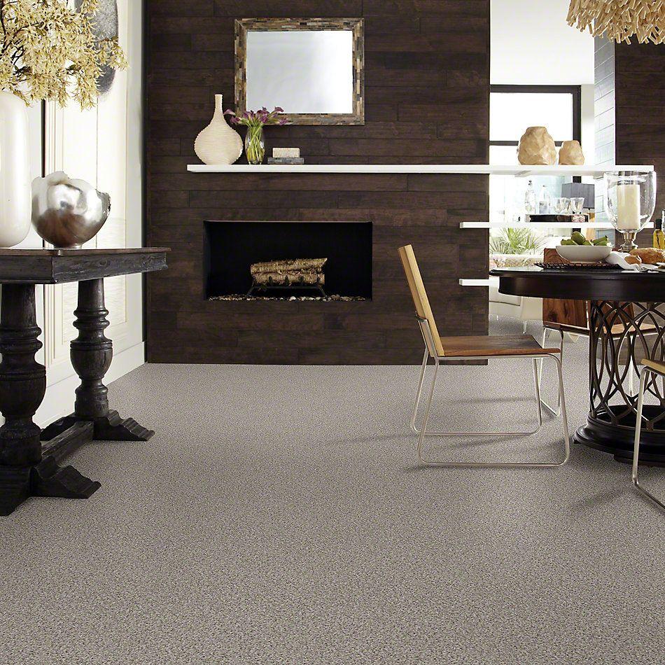 Shaw Floors Shaw Design Center Style Standard I Bridge Way 00174_5C771