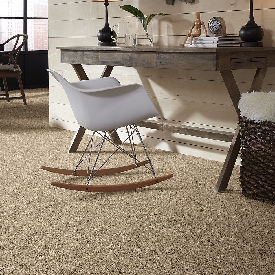 Shaw Floors Value Collections Nature Path Net Sand Castle 00174_E9847