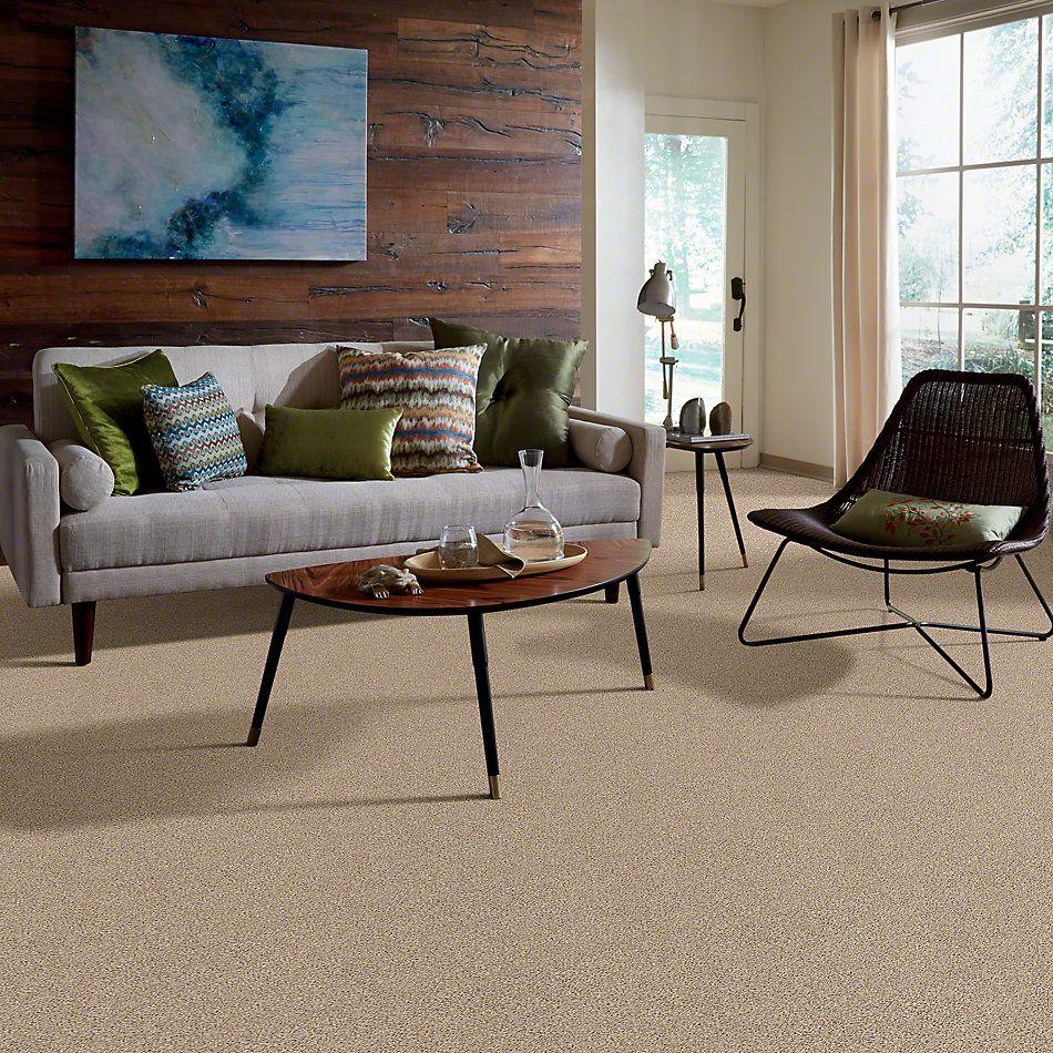 Shaw Floors Foundations Elemental Mix II Twine 00175_E9565